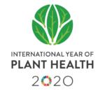 Προστατεύοντας τα φυτά